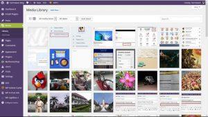 Agar Thumbnail Berubah Otomatis Saat Ganti Themes WordPress