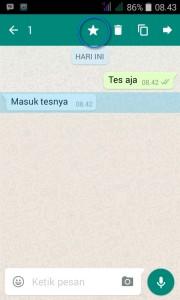 pesan berbintang whatsapp 1