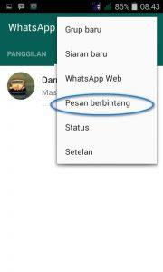 pesan berbintang whatsapp 2