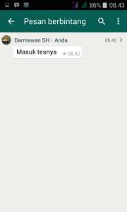 pesan berbintang whatsapp 3