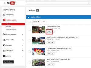 Blur di youtube 1