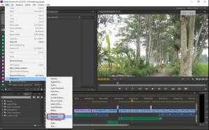 multi monitor di adobe premiere cc 1