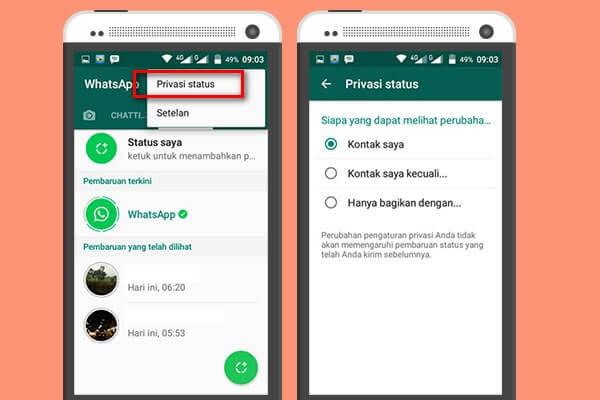 Siapa Yang Bisa Melihat Status Whatsapp Anda Darmawan Blog