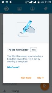 Undo Redo di Aplikasi WordPress