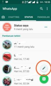 Status Berwarna di Whatsapp